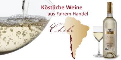 weissweine_chile_400_x_200